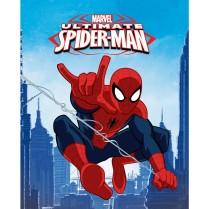 1200x1200_ifh_licence_spiderman_plaidv2